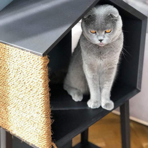 Домик для кота купить Минск
